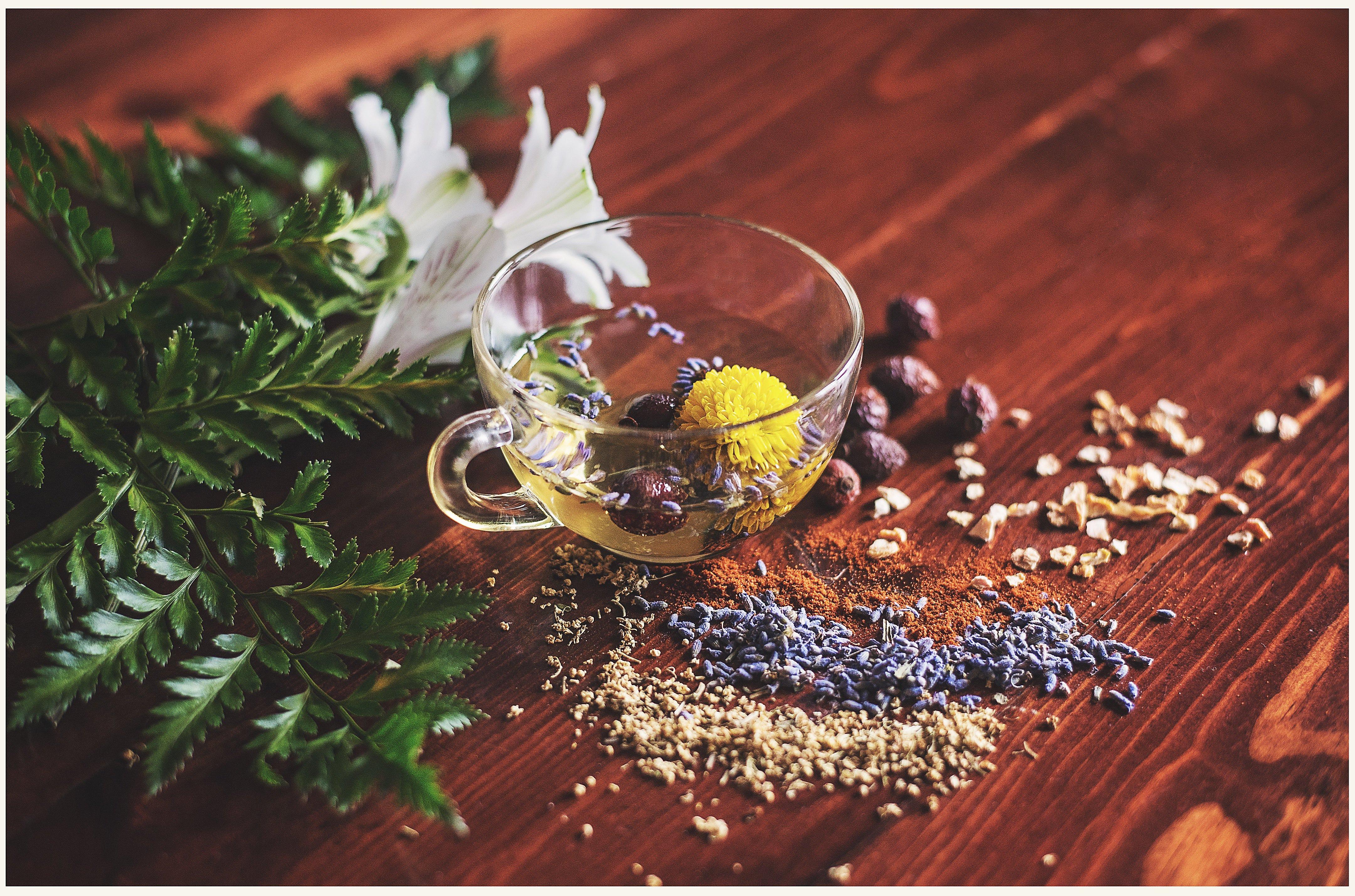 Demonstration of Herbal Remedies: Direct Resonance Testing